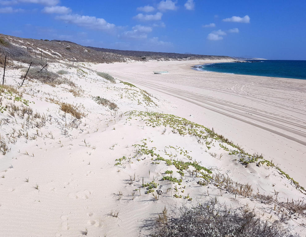 Lot 14 Camino Costero, East Cape
