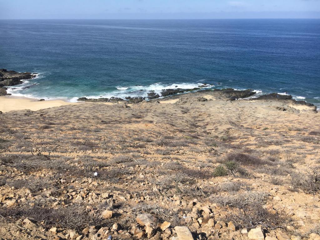 Beachfront, Pacific