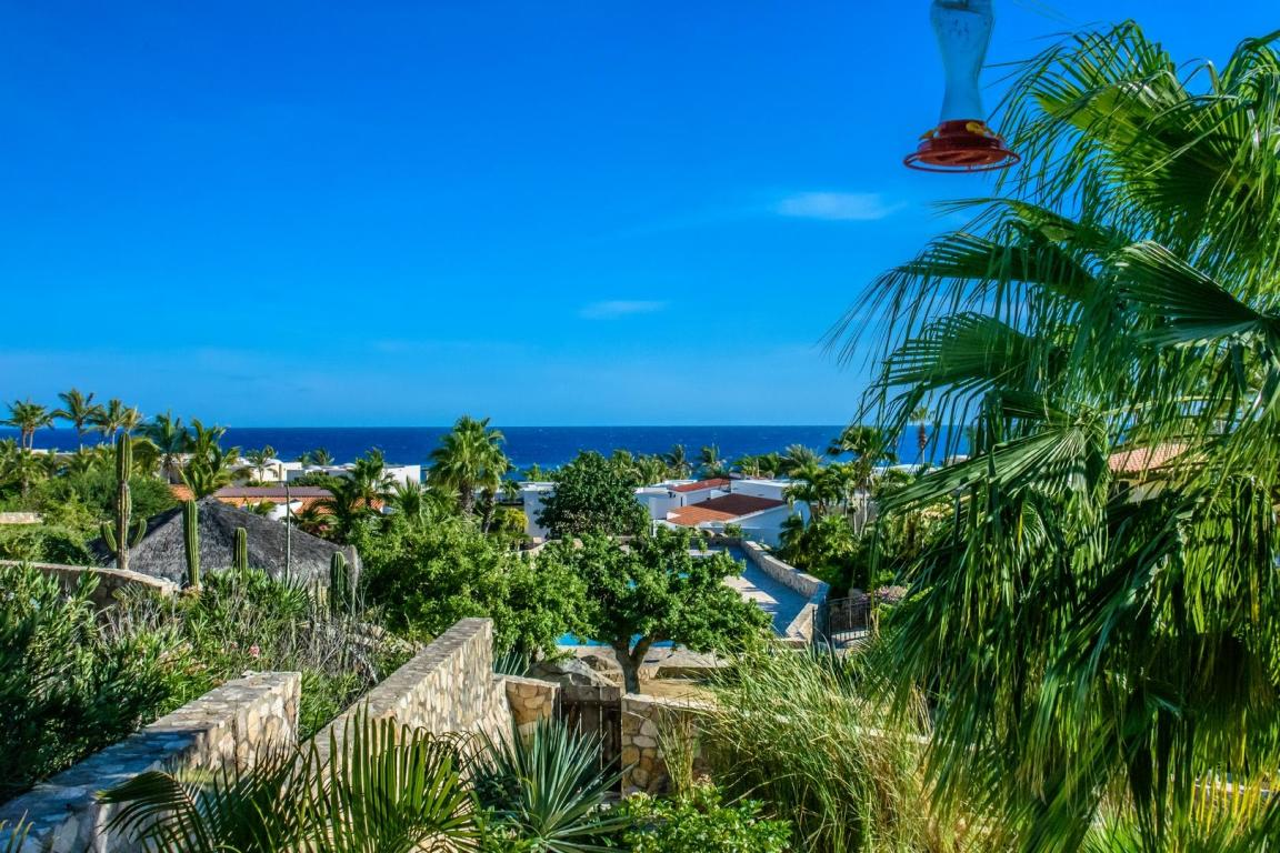 Camino de la Duna, Cabo San Lucas