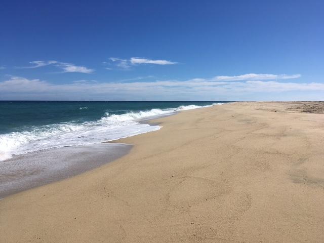 Playa Tortuga, East Cape