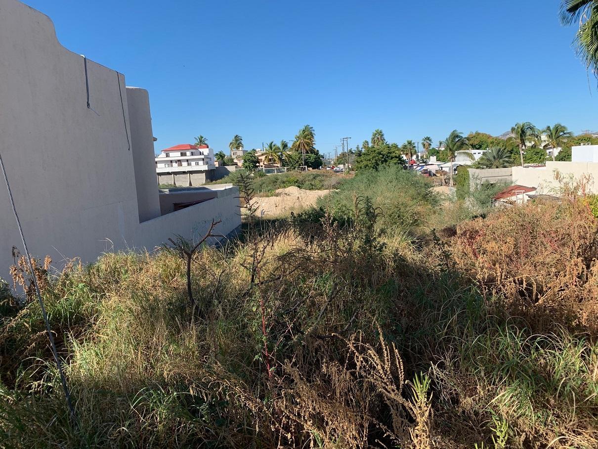 lot 17 Jarilla, San Jose del Cabo