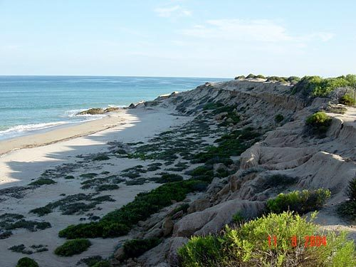 VINORAMA TO CABO PULMO, East Cape