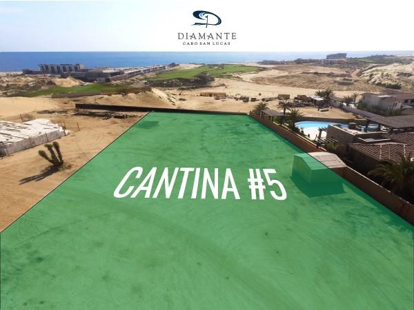 Cantina 5, Pacific