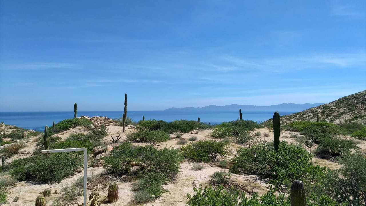 Mexia Piedra Mexia, La Paz