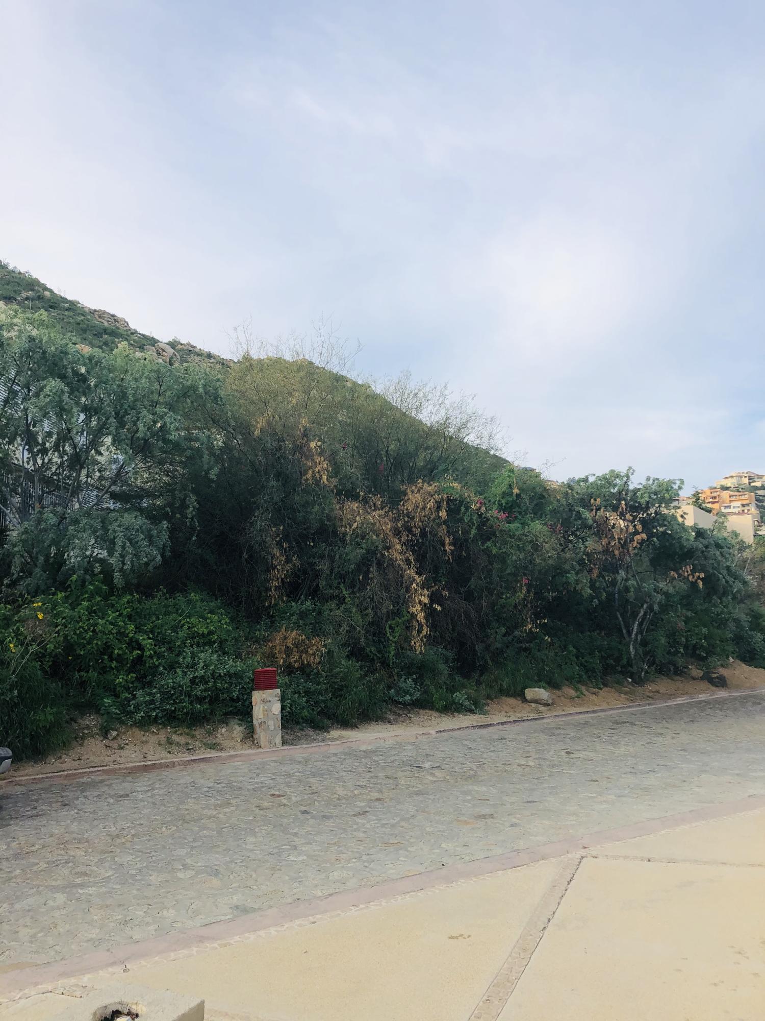 Lot 14 Fracc 12, Cabo San Lucas