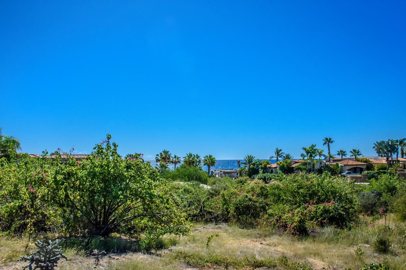 219 Camino de La Palma, Cabo Corridor