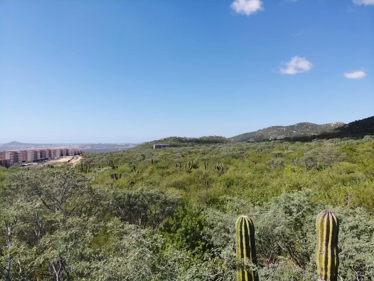 #228Z6 Ejido de Cabo San Lucas Parce P1 3, Cabo Corridor
