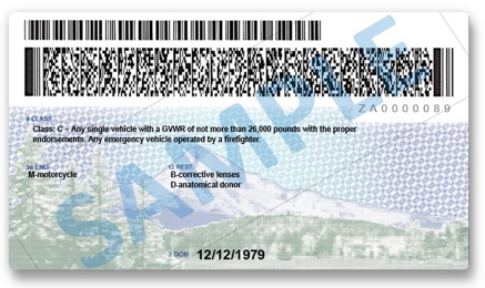 Oregon-License-Back.jpg