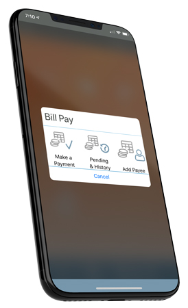 ms-4-billpay.jpg