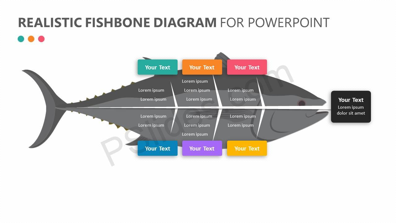 Realistic fishbone diagram for powerpoint pslides realistic fishbone diagram for powerpoint slide 1 ccuart