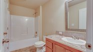 BellaVista Ironwood XL Bathroom