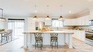 Ridgecrest LE 3205-16 Lot #16 Kitchen