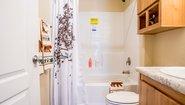 Peter's Homes The Glacier Bay Bathroom