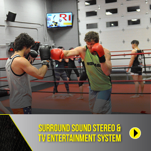 Surround sound stereo & TV entertainment system