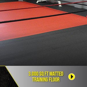 3000 sq ft matted training floor