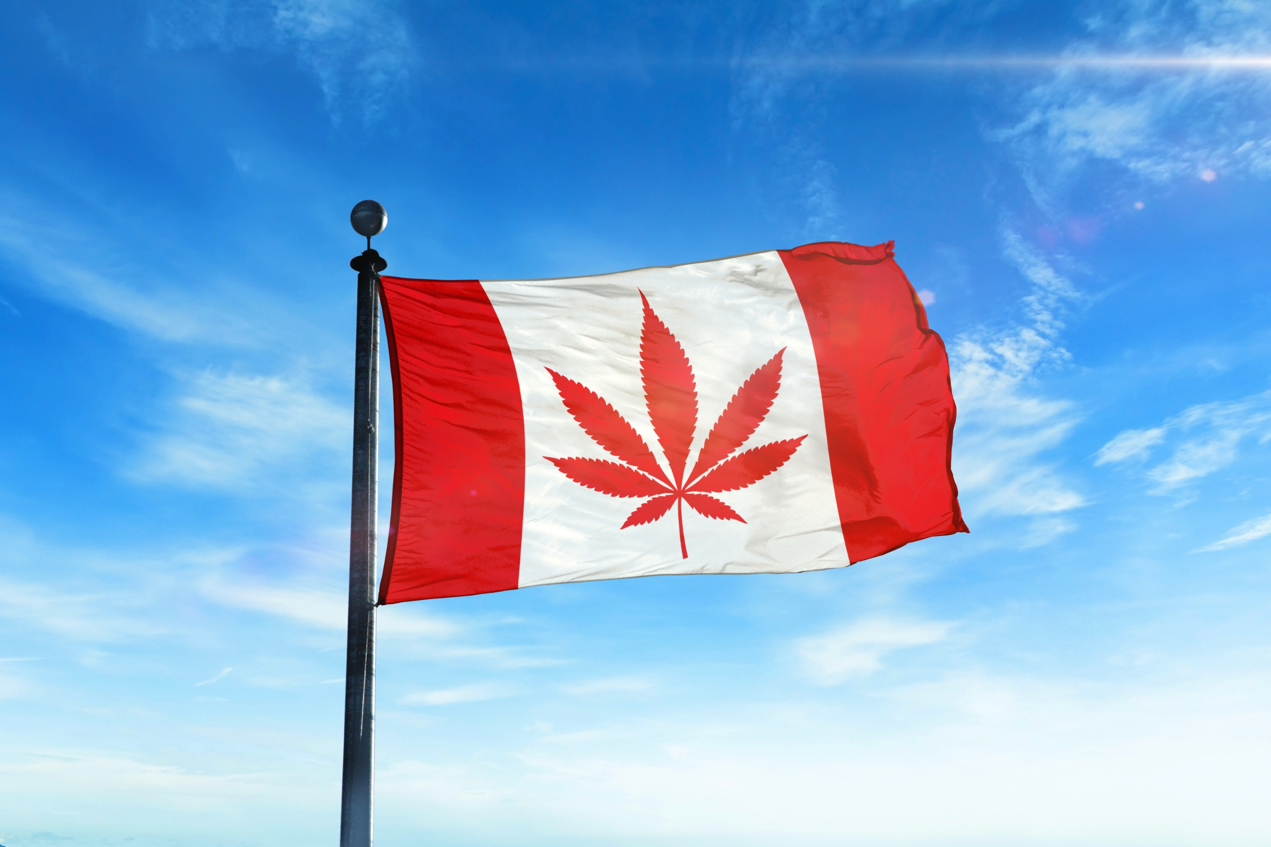 The Future of Cannabis Tourism