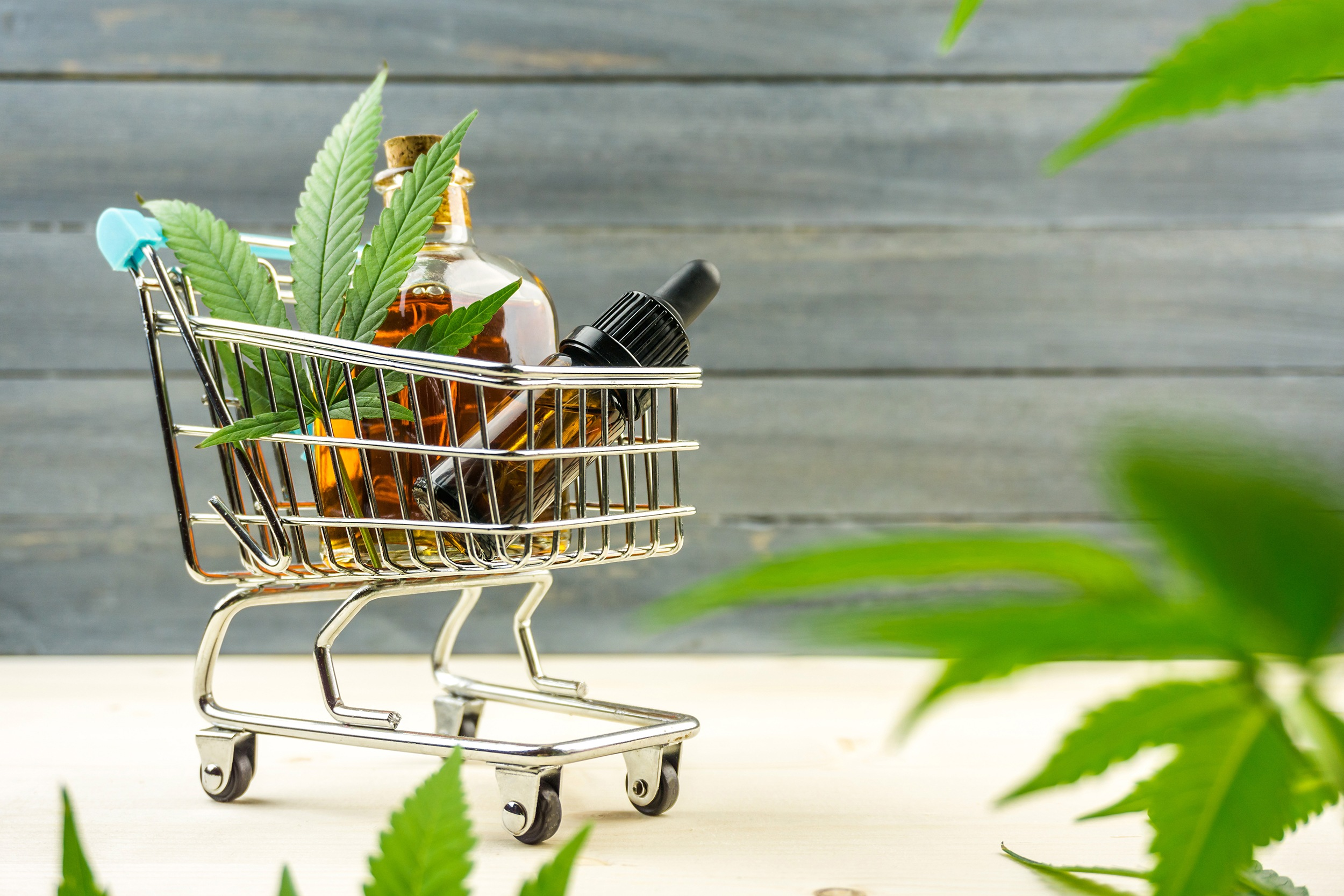 Concerns of Drug Interactions with Cannabis
