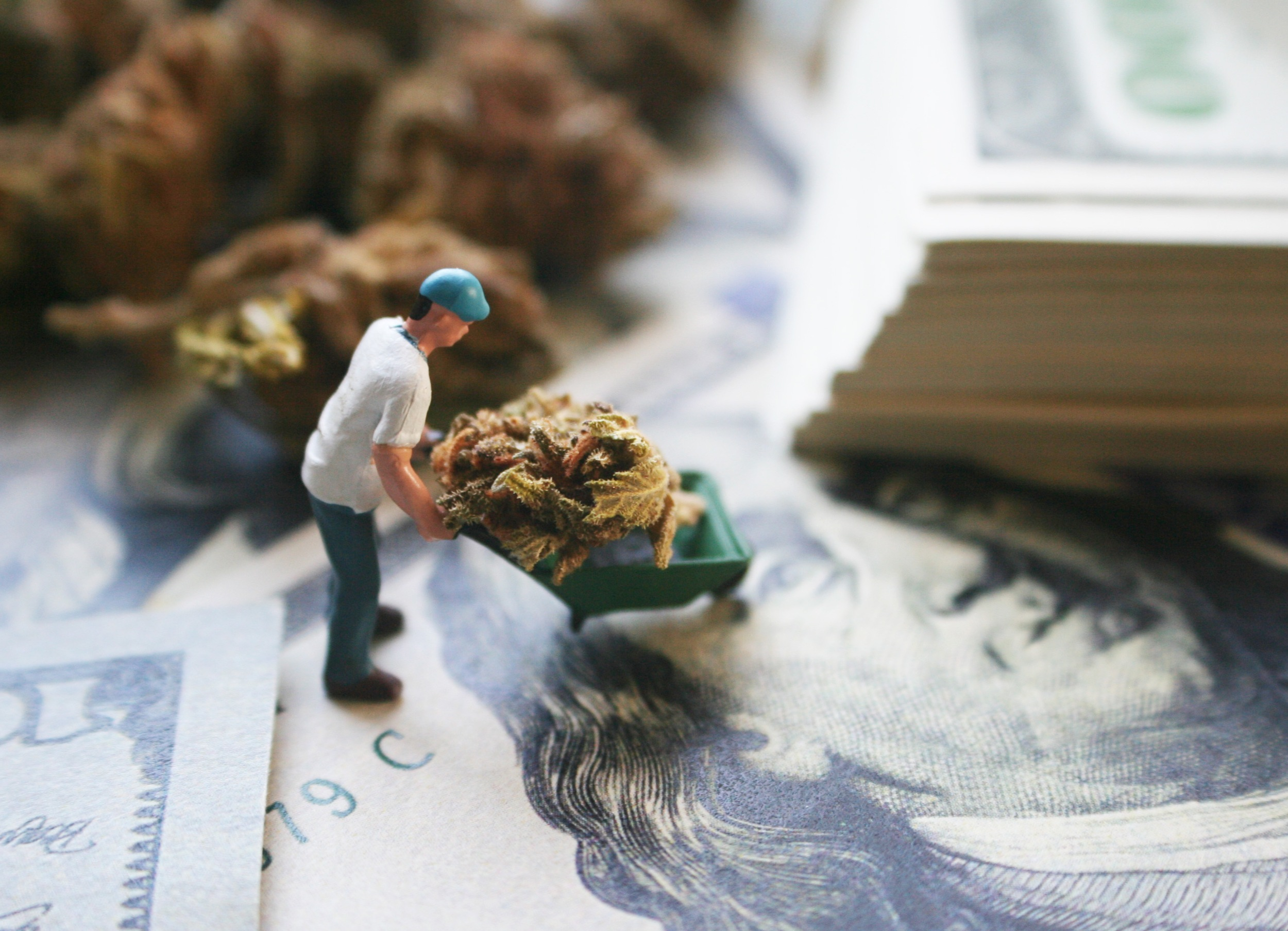 Taxing Cannabis Easier Than Before