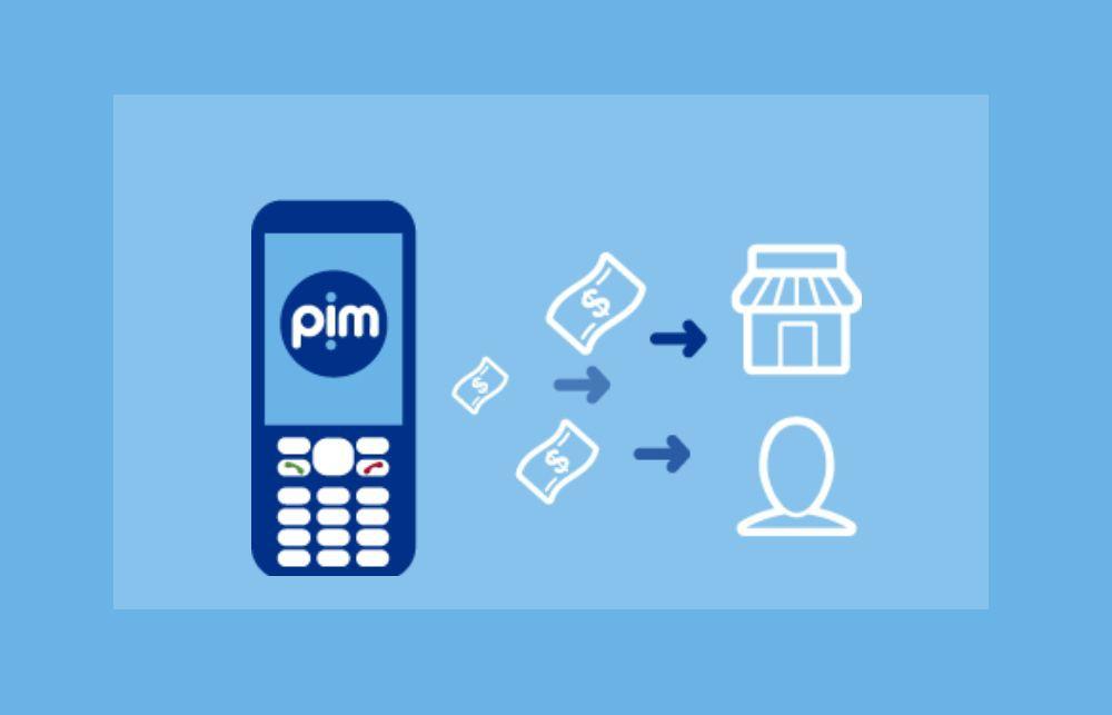 8db6e9f6d El Banco Nación concretó las pruebas piloto de su billetera virtual PIM, un  desarrollo de Nación Servicios con el que se pueden realizar compras, ...