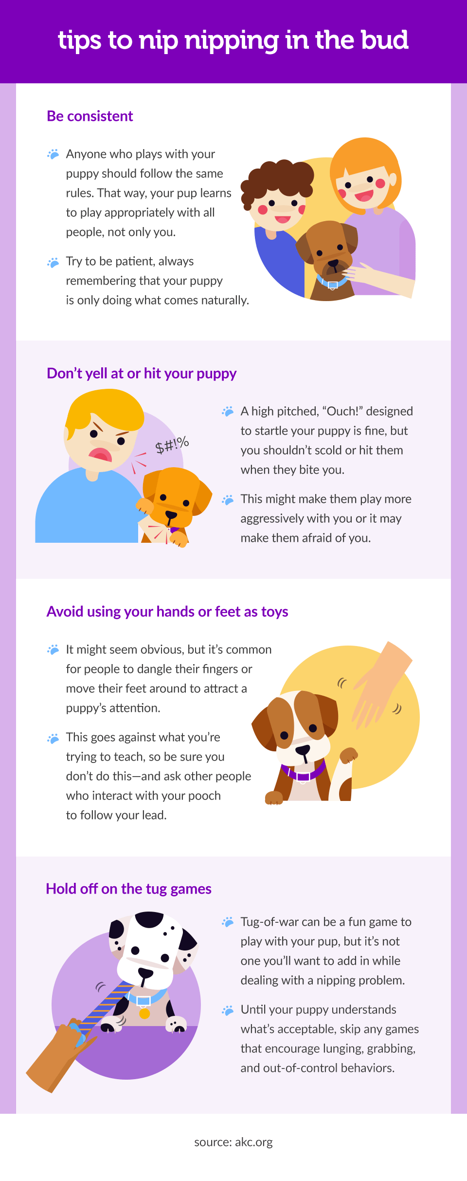 safe-and-humane-ways-to-teach-your-puppy-how-to-stop-biting-002