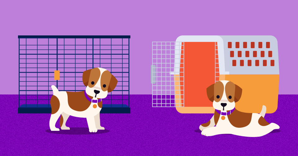 considering-crate-training-your-puppy-heres-how-header-1