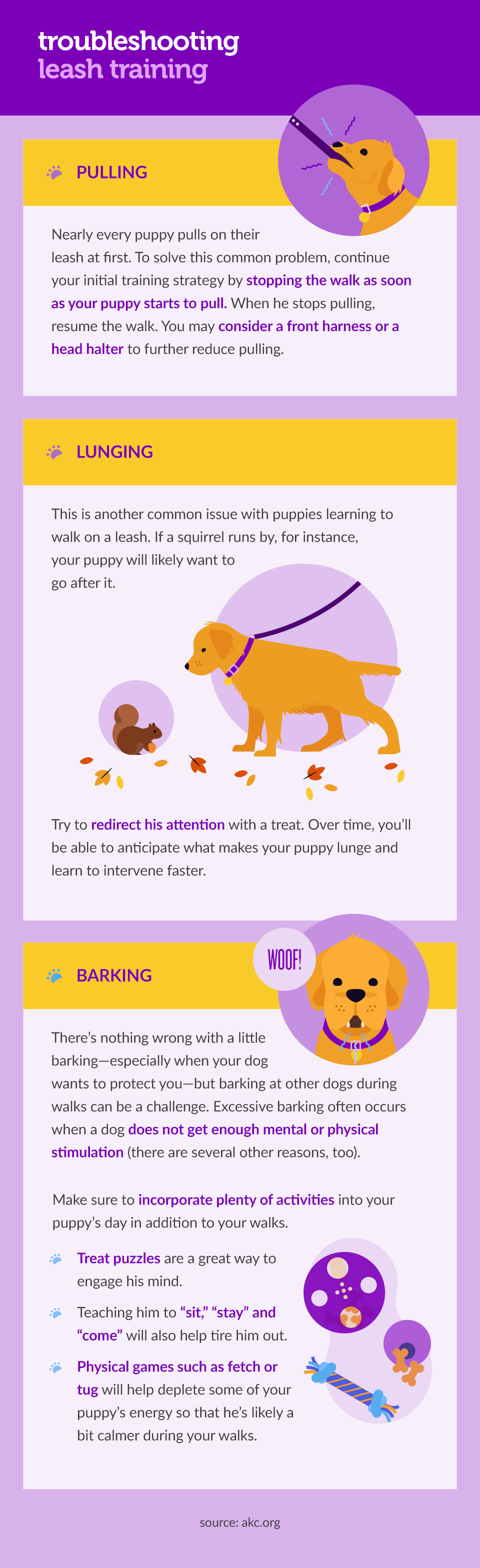 how-to-leash-train-your-puppy-003