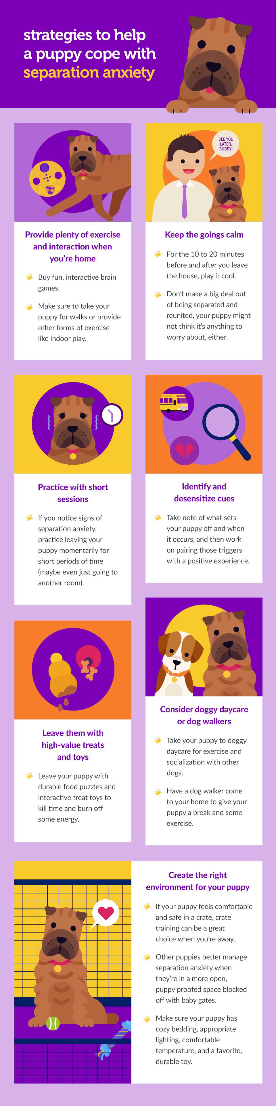 soothe-your-puppys-separation-anxiety-with-these-strategies-003-1