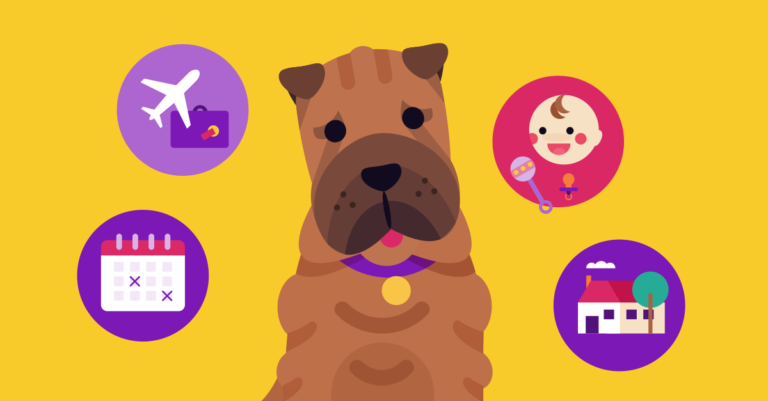 soothe-your-puppys-separation-anxiety-with-these-strategies-open-graph