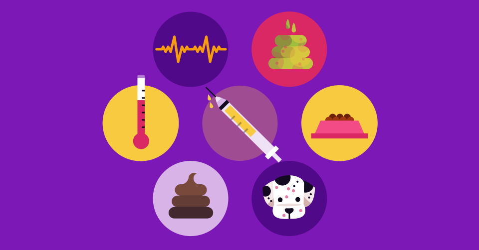 a-typical-vaccination-schedule-for-your-puppy-first-year-header