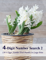 4-Digit Number Search