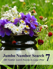 Jumbo Number Search
