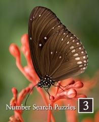 Number Search Puzzles in Large Print