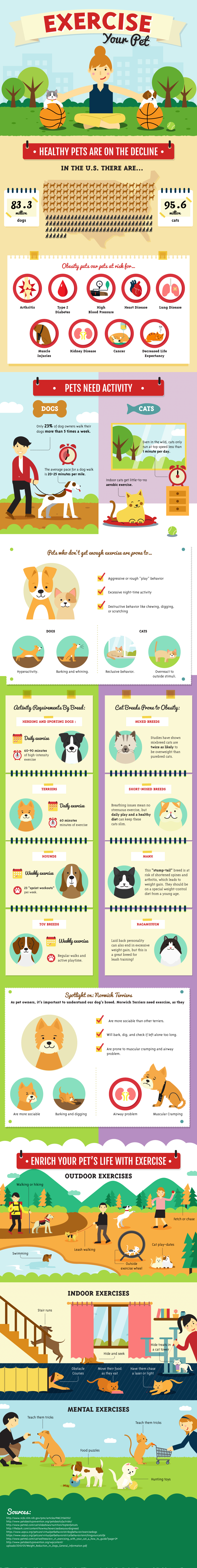 Exercise your Pet Infographic