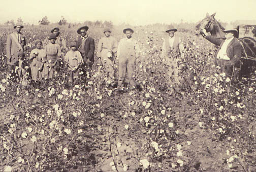 Sharecroppers Reconstruction Era