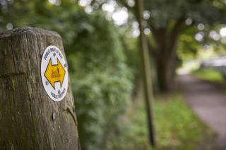 explore the local public footpaths