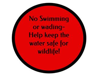 No Swimming or Wading!