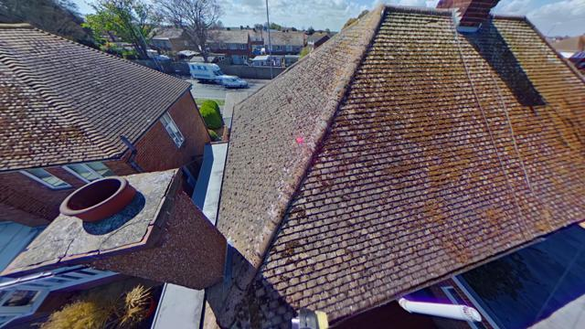Rear roof views