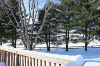 Deck View of Park