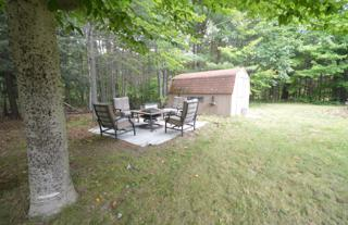 Shed and fire pit