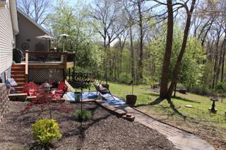 Back yard and entertaining space