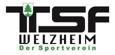 Welzheimer Limesläufe 2019