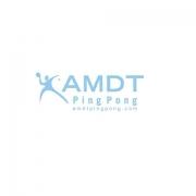 AMDT Ping Pong