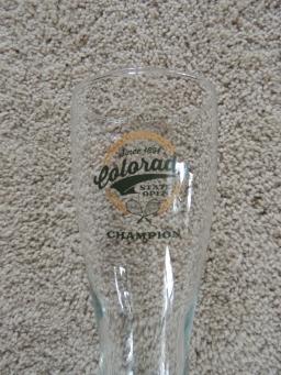 colorado open 2014 champion beer mug.JPG