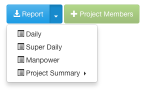 raken-manpower-report-type