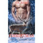 Featured Book: One Furry Christmas by T.S. Baed