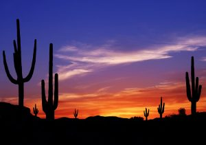 5 Tips Selling Your Phoenix Home