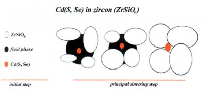 The mechanism of Cd, Se stain inclusion