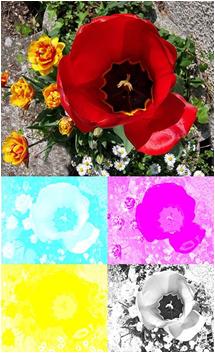 CMYK color separation for InkJet printer