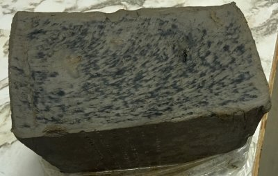 Mold growing an a clay having added xantham gum