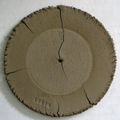 Albany Slip DFAC dried disk